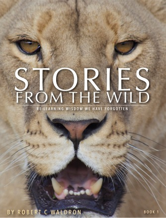 Stories From The Wild COVER .